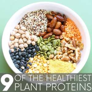 9 of the Healthiest Plant Proteins