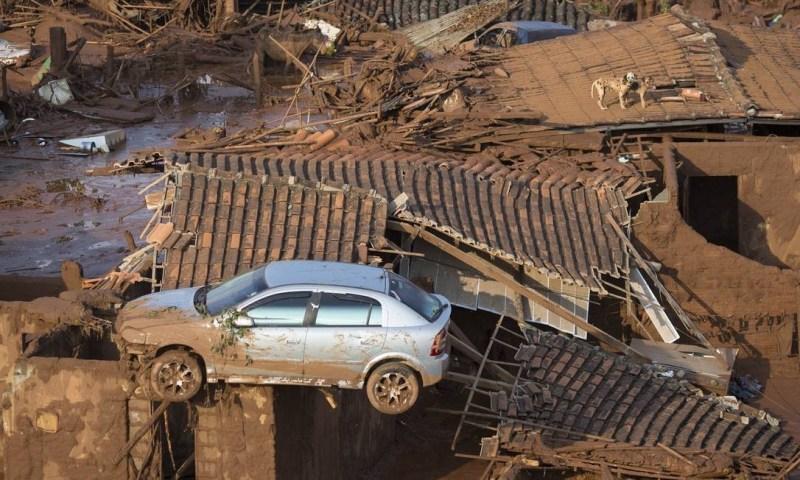 Um carro e dois cães são vistos no telhado de casas destruídas Felipe Dana / AP
