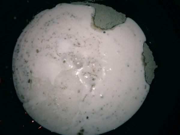 2013226 teff pancakes5
