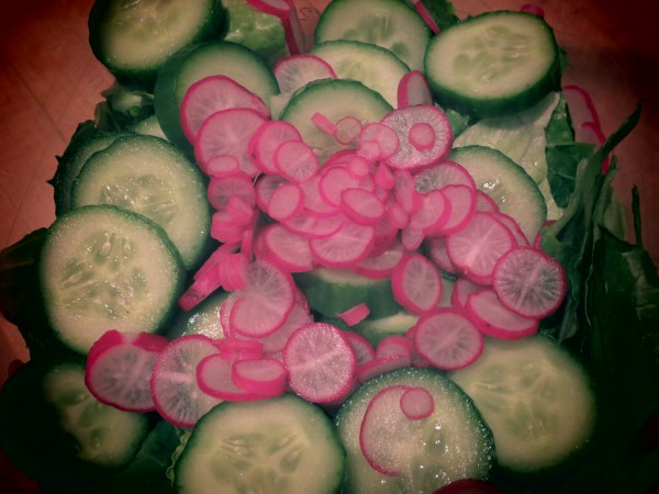2013102 no picnic salad