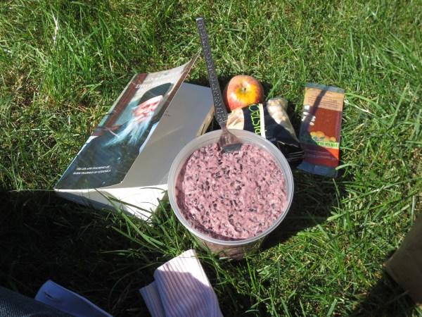 2013103 forbidden pudding picnic3