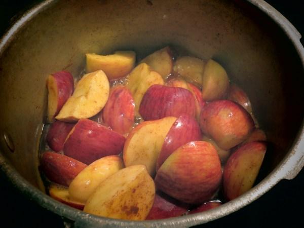2013115 applesauce