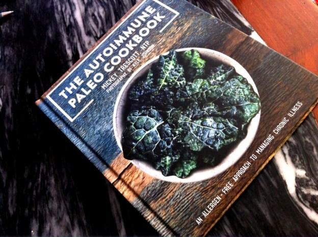 AIP cookbook