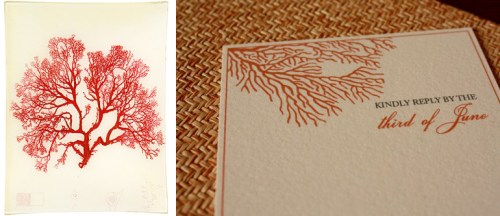 coral 500x216 More Paper Inspired Pairings