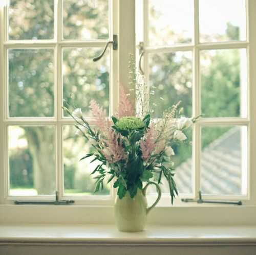 flowers in the window 500x499 {happy weekend!}