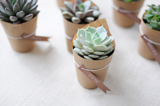 Succulent Seating Cards2 Wedding Details: Escort Cards and Place Cards