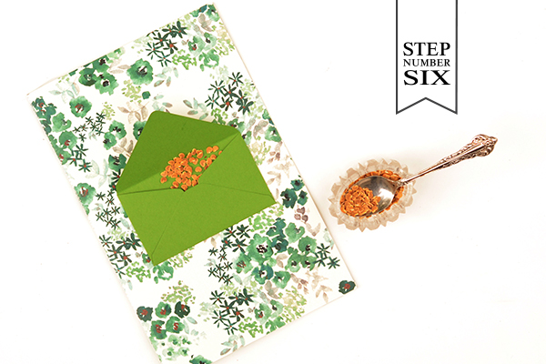 Env Program Step6 DIY Tutorial: Seed Packet Wedding Ceremony Program