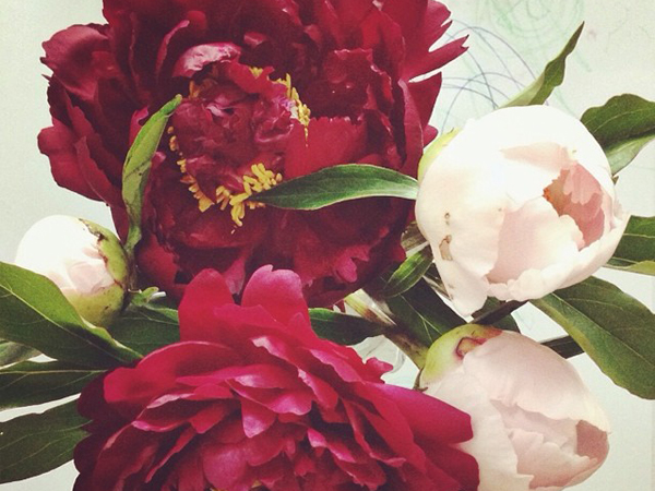 OSBP Peony Bouquet Instagram Happy Weekend!