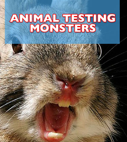 Before You Make Another Purchase Be Sure You Know What Companies Do Animal Testing
