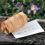 Secret Message Cipher Wheel