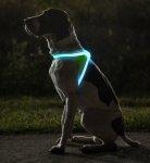 Reflective LED Dog Vest