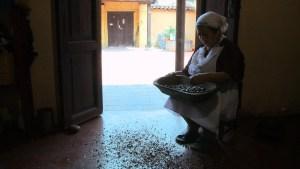 clementina_y_el_chocolate__still_cccconpatas_chiapas_89362