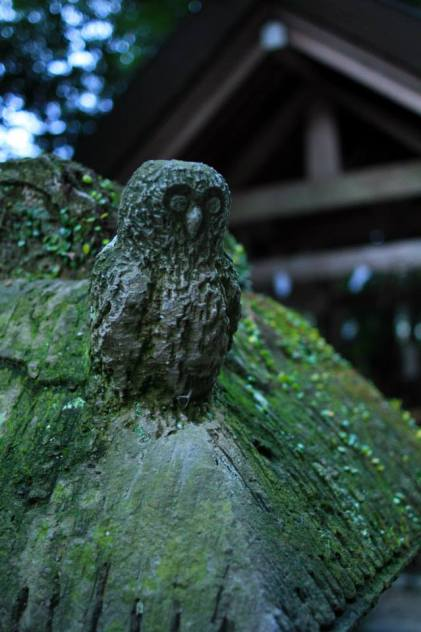 The statue of an owl