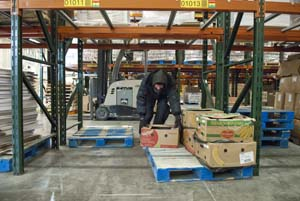 1regional food bank warehouse 24mh