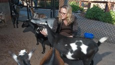 Louisa McCune Elmore with goats_0090mh