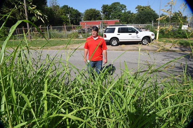 David Oen surveys the tall grass growing in a lot on the corner of SW Fourth Street and Lee Avenue. (Mark Hancock)