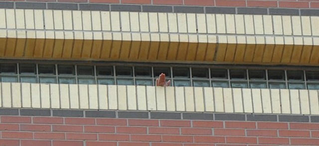 An Oklahoma County Sheriff's Department investigator sticks his hand through a wall opening made by inmates during a recent escape attempt. (Oklahoma County Sheriff's Office / Provided)