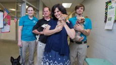 OKC Animal Shelter Supervisor, Julie Bank, poses for a photo with her staff and adoptable dogs and a kitten on Monday, June 27, 2016 in Oklahoma City.  (Emmy Verdin)