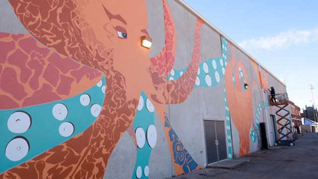Jack Fowler works on his mural in Bricktown, Thursday, Dec. 1, 2016.  (Garett Fisbeck)
