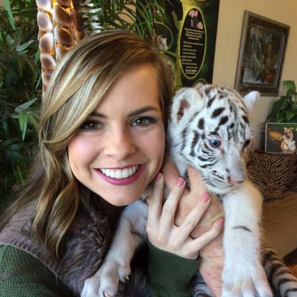 Tiger Safari (webdam.com / provided)
