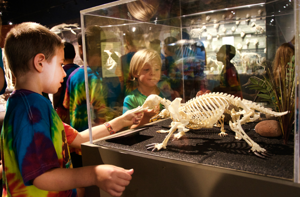 Skeletons Museum of Osteology Oklahoma City features the largest private collection of osteological specimens in the world. (provided)