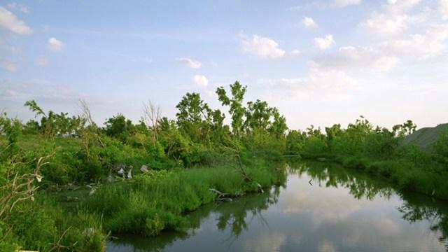 Stewart_Lytle Creek