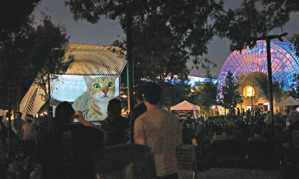 Internet Cat Video Festival on the Great Lawn of the Myriad Botanical Gardens, August 1, 2015. (provided)