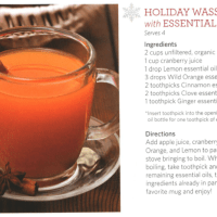 Celebrate with doTERRA oils – Wassail and Gingerbread Recipes