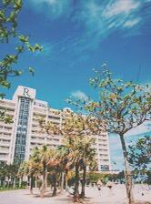 快適な旅はホテル選びで決まる! 子どもと泊まるホテルの選び方 @沖縄旅行