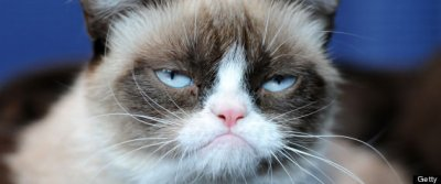 Grumpy Cat Makes Appearance At Kitson Santa Monica