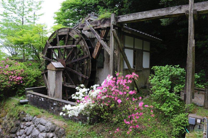 糸島市『白糸の滝』