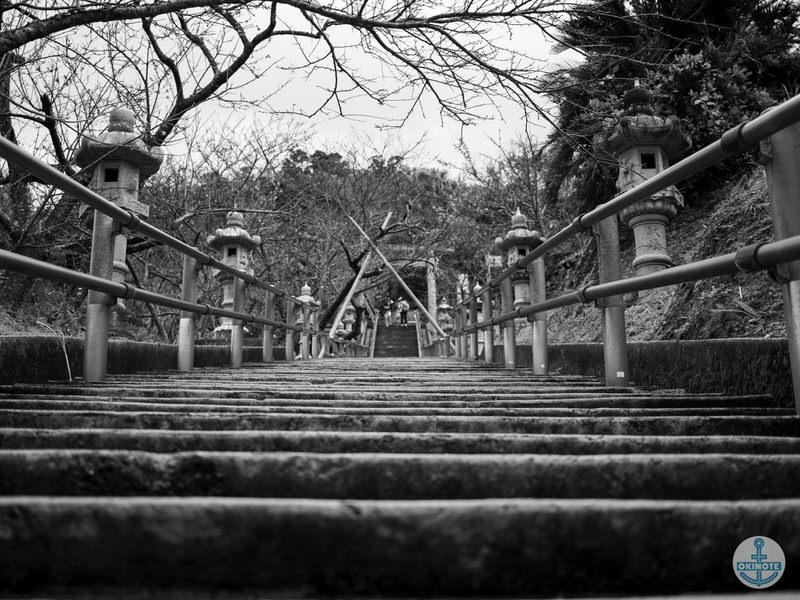 名護中央公園2016 桜まつり