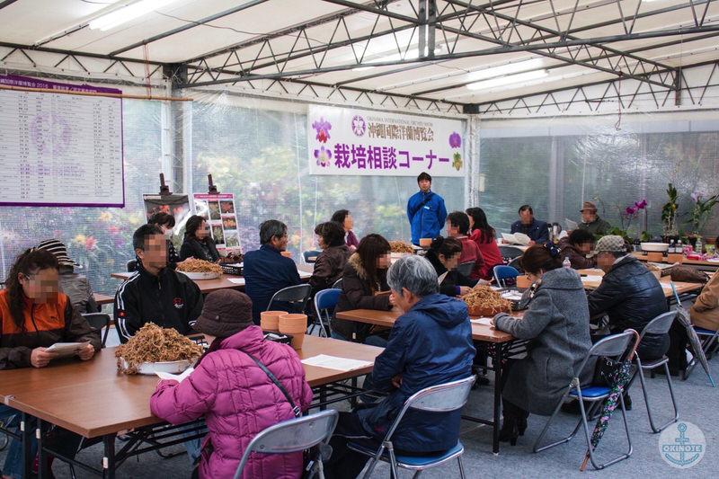 沖縄国際洋蘭博覧会2016 栽培相談コーナー