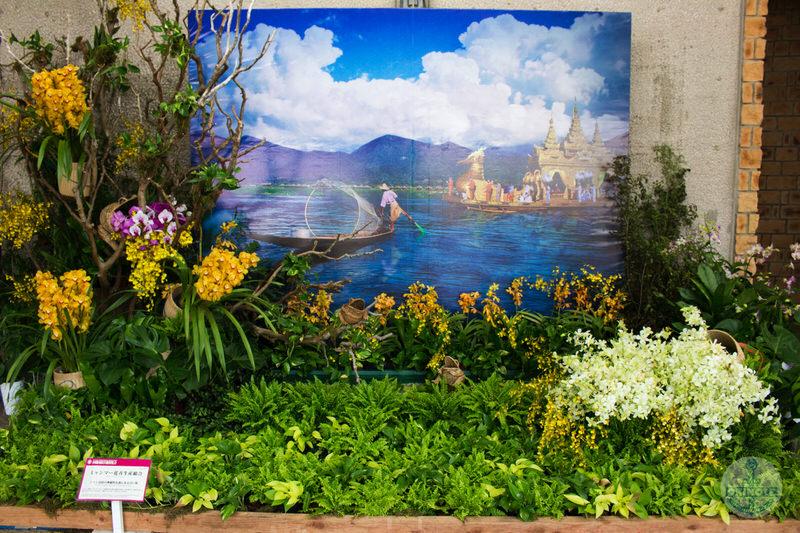 ミャンマー花卉生産組合「シャン高原の神秘的な森にある青い海」