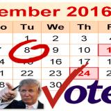 Donald Trump says Vote November 28th
