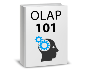 learn-about-olap-ebooks-olap-101-history-business-intelligence