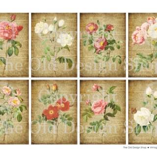 New Digital Collage Sheet ~ Altered Vintage Roses
