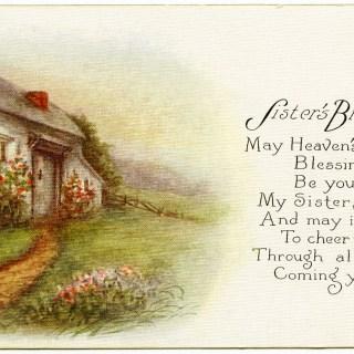 Sister's Birthday Vintage Postcard
