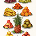 old cookbook page, mrs beeton's fruit, apples oranges bananas grapes pineapple, vintage food clipart, antique illustration food art