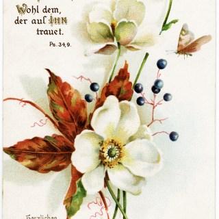 Floral German Postcard ~ Free Vintage Image