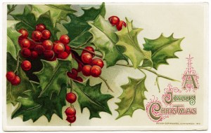 winsch vintage postcard, antique postcard graphic, free vintage christmas postcard, holly and berries image, john winsch postcard