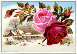 antique trading card, victorian card flowers, vintage winter scene illustration, flowers graphic, vintage advertising card
