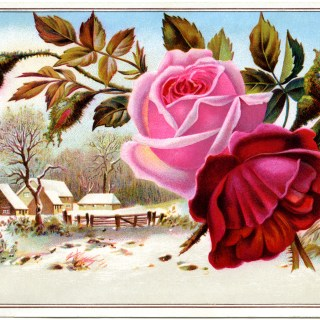 Winter Scene and Flowers Victorian Card