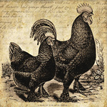 Langshan Rooster and Hen ~ Primitive Label and Tags