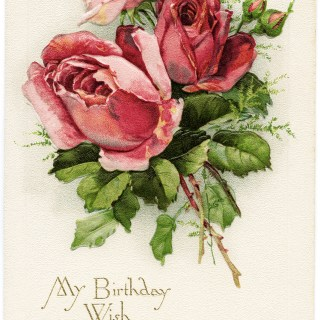 Free Vintage Image ~ My Birthday Wish Roses Postcard