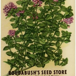 Free Vintage Image ~ Thyme Seed Packet