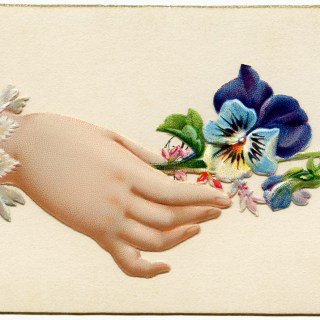 Free Vintage Image ~ Victorian Calling Card Blue Pansy