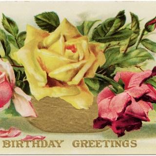 Free Vintage Image ~ Roses Birthday Postcard
