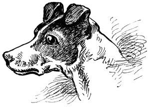 antique school lesson, vintage dog clipart, vintage cat clip art, old book page, old paper ephemera