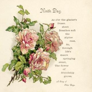 Free Vintage Image ~ Pink Roses and Poem